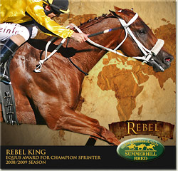 rebel king champion sprinter