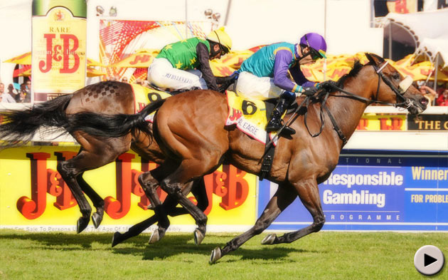 Martial Eagle wins J&B Met