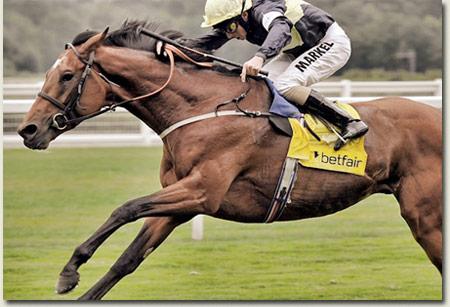 Nathaniel Horse