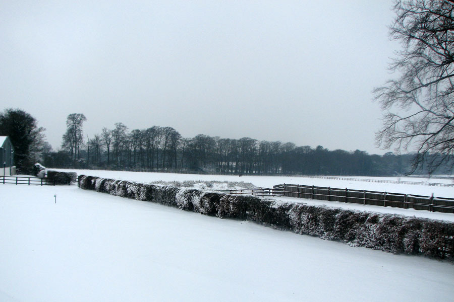 National Stud Snow