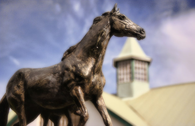 Summerhill Stallion Barn