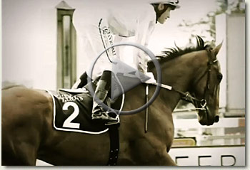 pierre jourdan peermont emperors palace ready to run cup 2009 video
