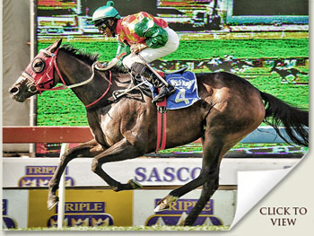 Checcetti wins Jacaranda Handicap