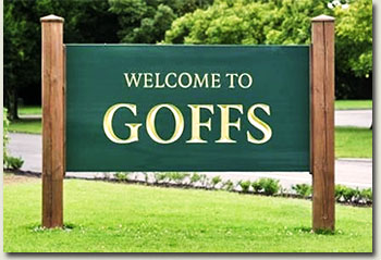 goffs ireland