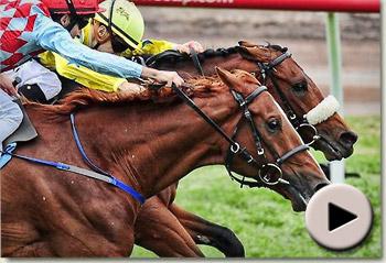 Dunaden wins Melbourne Cup 2011