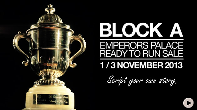 Summerhill Stud - Emperors Palace Ready To Run Sale