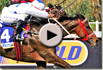 queensway winning her maiden at clairwood racecourse