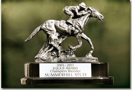 South African Breeder's Championship Trophy