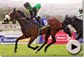 ridethebreeze by anabaa winning at scottsville racecourse for joey ramsden