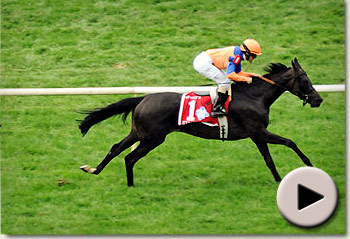Stacelita winning the Beverly D. Stakes at Arlington Park