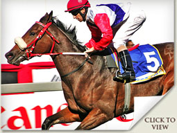 chatanooga chuchu win at greyville with jockey anton marcus