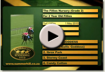 2010 fillies nursery waywest goddess video