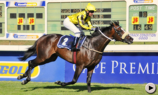 Capetown Noir wins the Cape Premier Yearling Sales Guineas