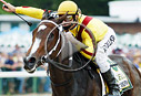 rachel alexandra haskell invitational 2009 video
