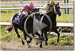 rachel alexandra new orleans ladies stakes video