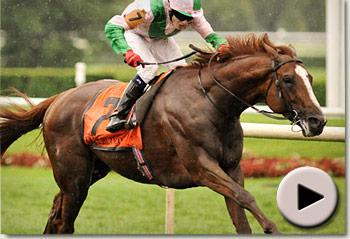 Cape Blanco winning the Arlington Million at Arlington Park