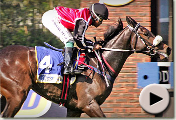 Fancy Footwork winning her maiden for trainer Mike de Kock