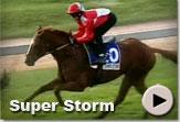 Super Storm - Vodacom Durban July Gallops