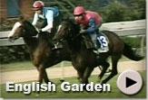 English Garden - Vodacom Durban July Gallops