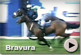 Bravura - Vodacom Durban July Gallops