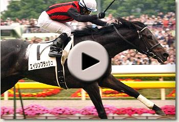 eishin flash tokyo yushin japanese derby 2010 video