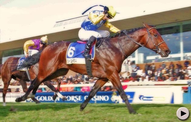 Shea Shea wins the Golden Horse Casino Sprint