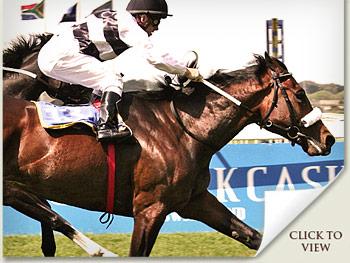 Run For It - Vodacom Durban July runner
