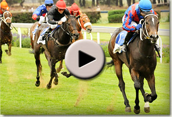 running rogue winning her maiden at vaal racecourse for leon erasmus