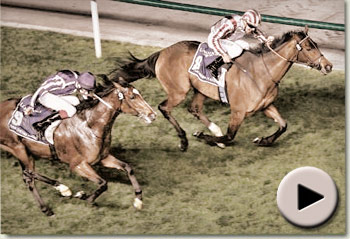 Cirrus des Aigles wins Dubai Sheema Classic