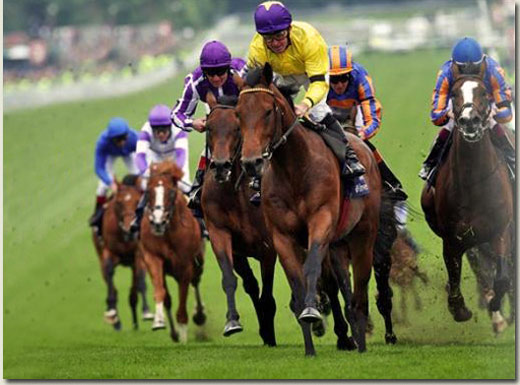 Sea The Stars - Investec Derby 2009 / Associated Press (p)