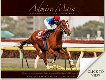 admire main racehorse