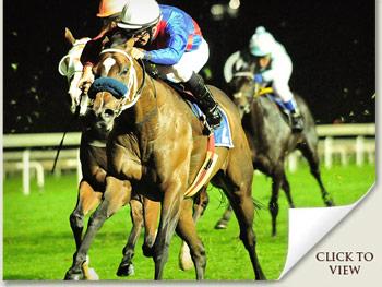 Onehundredacrewood Racehorse by Malhub