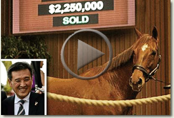 katsumi yoshida azeri keeneland november breeding stock sale 10 november 2009 video