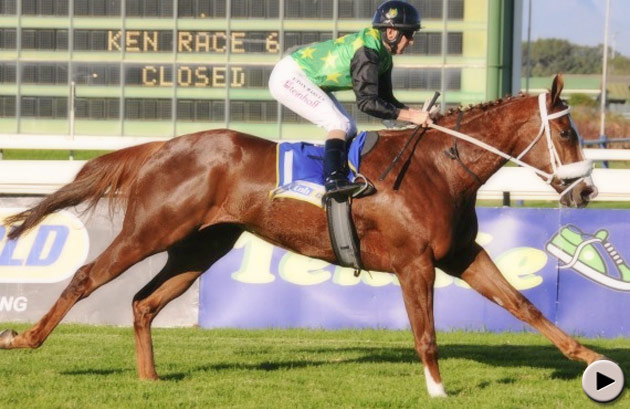 Blueridge Mountain - Sweet Chestnut Stakes