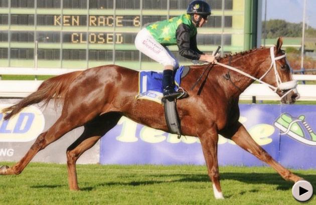 Blueridge Mountain - Sweet Chestnut Stakes