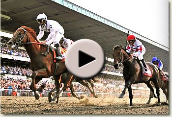 video of drosselmeyer winning the 2010 belmont stakes at belmont park
