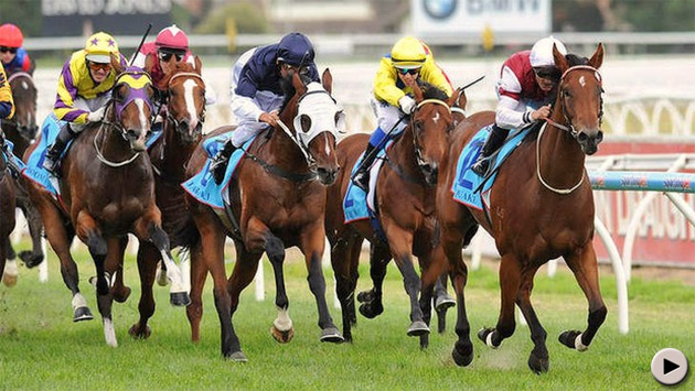 Earthquake - Blue Diamond Stakes