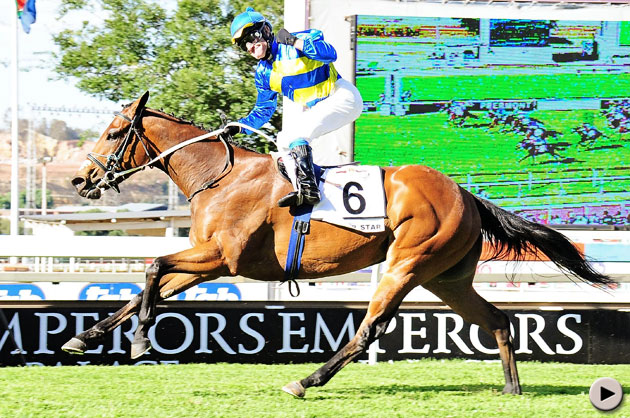 Winter Star - Emperors Palace Ready To Run Cup