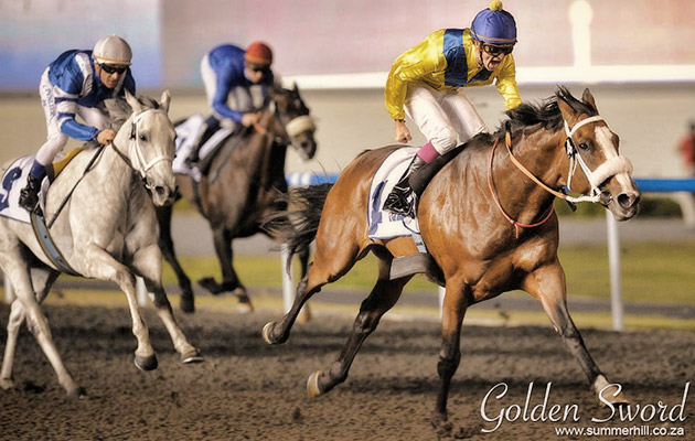 Golden Sword / Andrew Watkins (p)