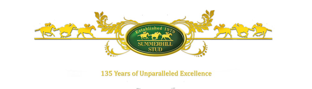 Summerhill Stud - 135 Years of Unparalled Excellence