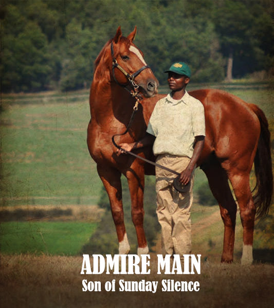Admire Main by Sunday Silence