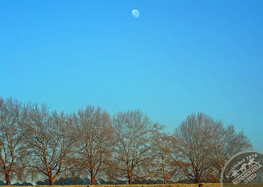 17-winter-day-kzn-midlands.jpg