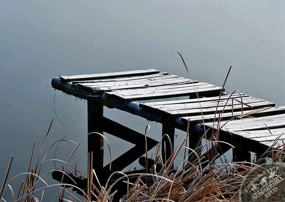 13-winter-day-kzn-midlands.jpg
