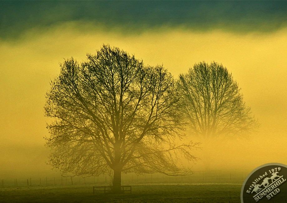 7-winter-day-kzn-midlands.jpg