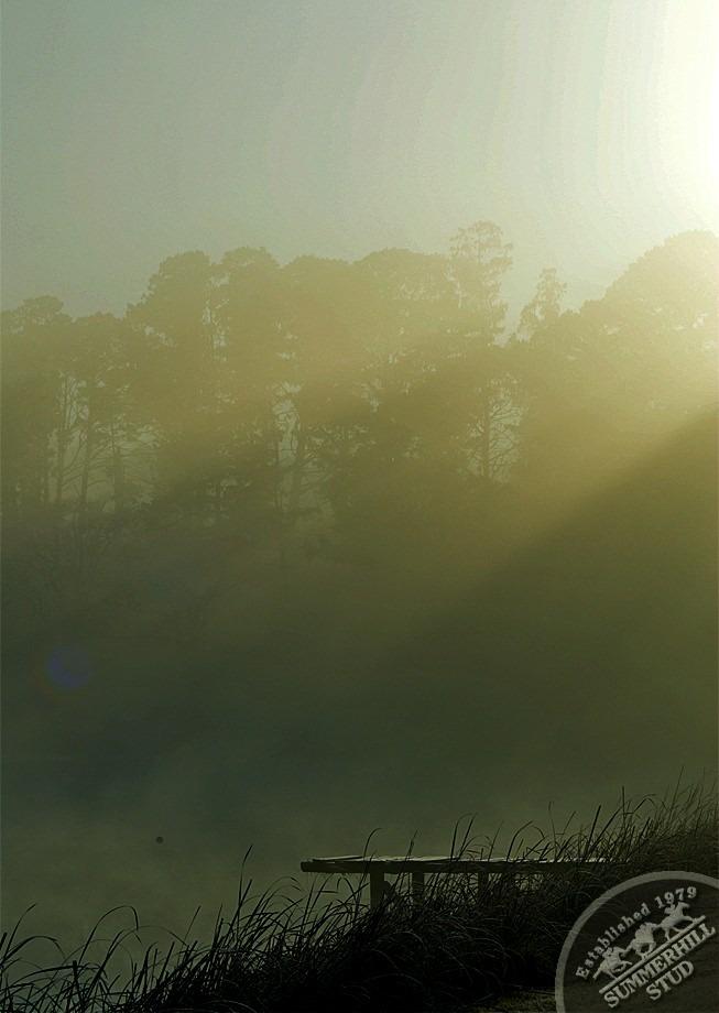 12-winter-day-kzn-midlands.jpg
