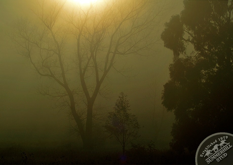 9-winter-day-kzn-midlands.jpg