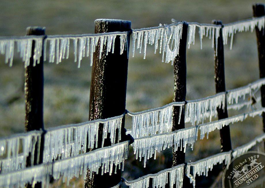 8-winter-day-kzn-midlands.jpg