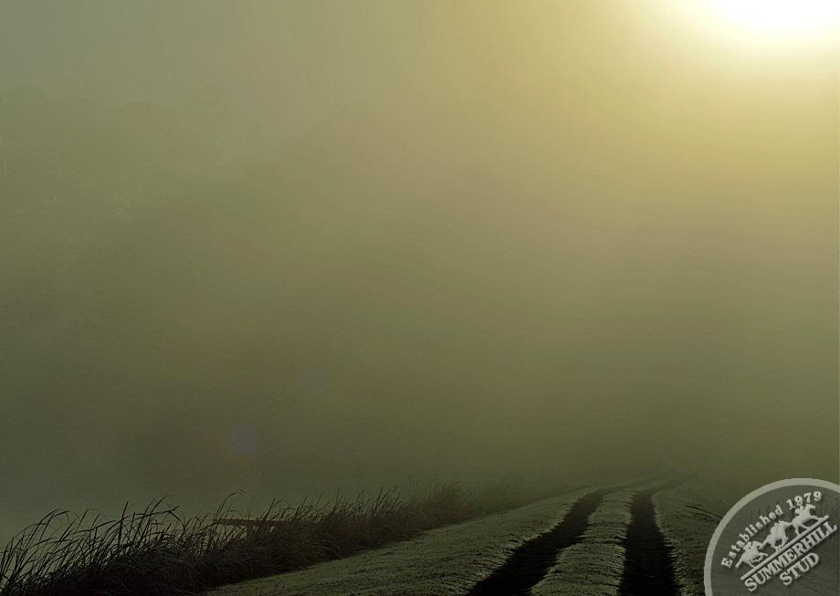 11-winter-day-kzn-midlands.jpg