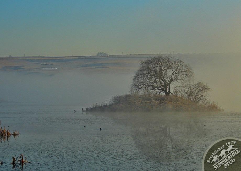 10-winter-day-kzn-midlands.jpg