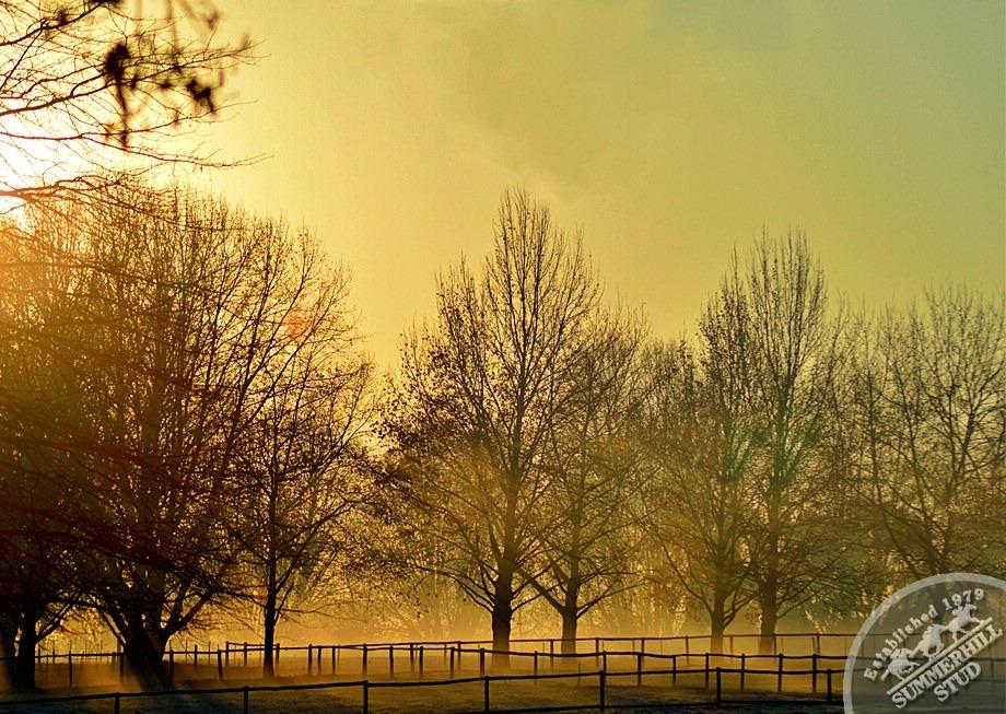 2-winter-day-kzn-midlands.jpg